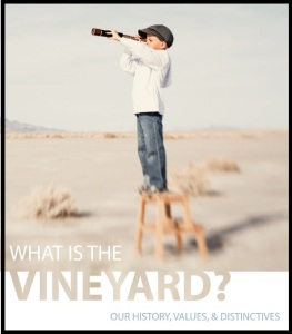 what is the vineyard